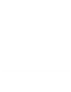 SONY LR-03 AAA ALKALINA