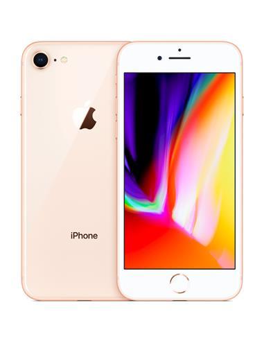 N.FUJIAN PRISMATICOS SDCG 10 X 40 (850X40)