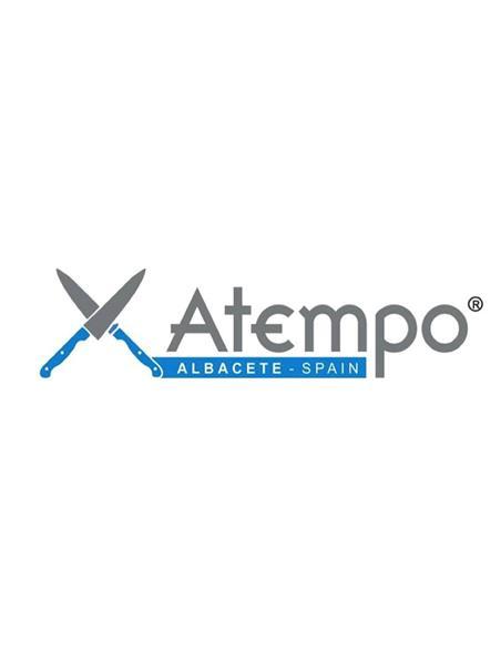ATEMPO